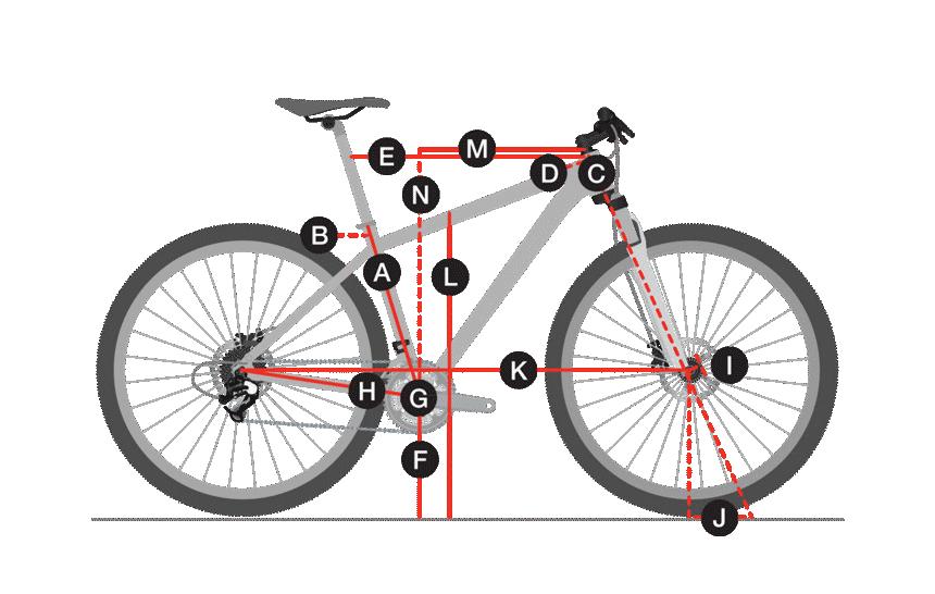 Geometria Bicicleta Trek Cali WSD