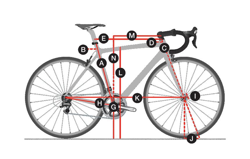Geometria Bicicleta Trek Feminina Lexa 2